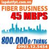 Fiber Business - 45 Mbps